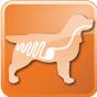 373_37_gastrointestinal-3-canine