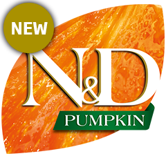 50_47_nd-pumpkin-logo-new